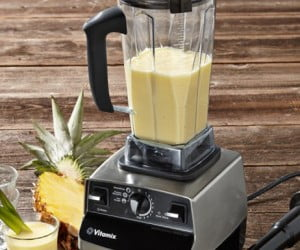 vitamix-professional