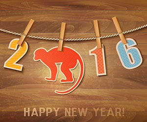 Chinese Zodiac Predictions For 2016